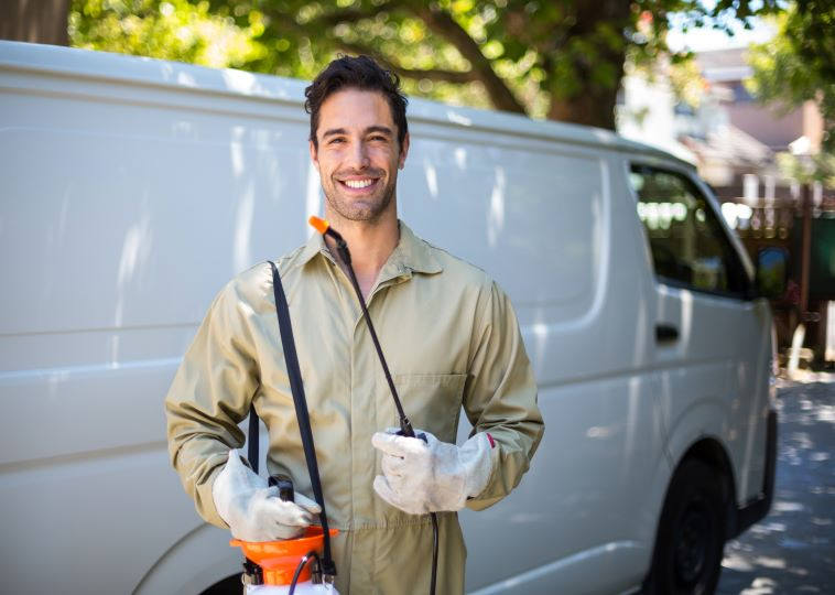 Top Pest Control Experts in Melbourne, VIC