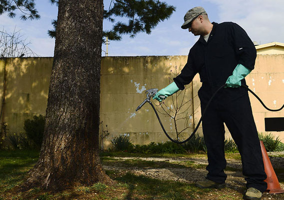 What Are The Types of Pest Control Methods?