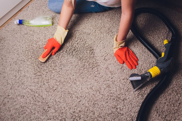 Carpet Cleaning Services in Tweed Heads, NSW