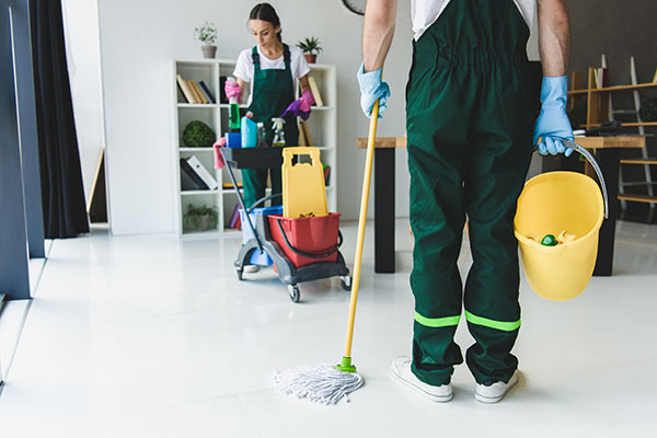 Professional Cleaners in Mosman, NSW